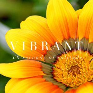 Vibrant meditation