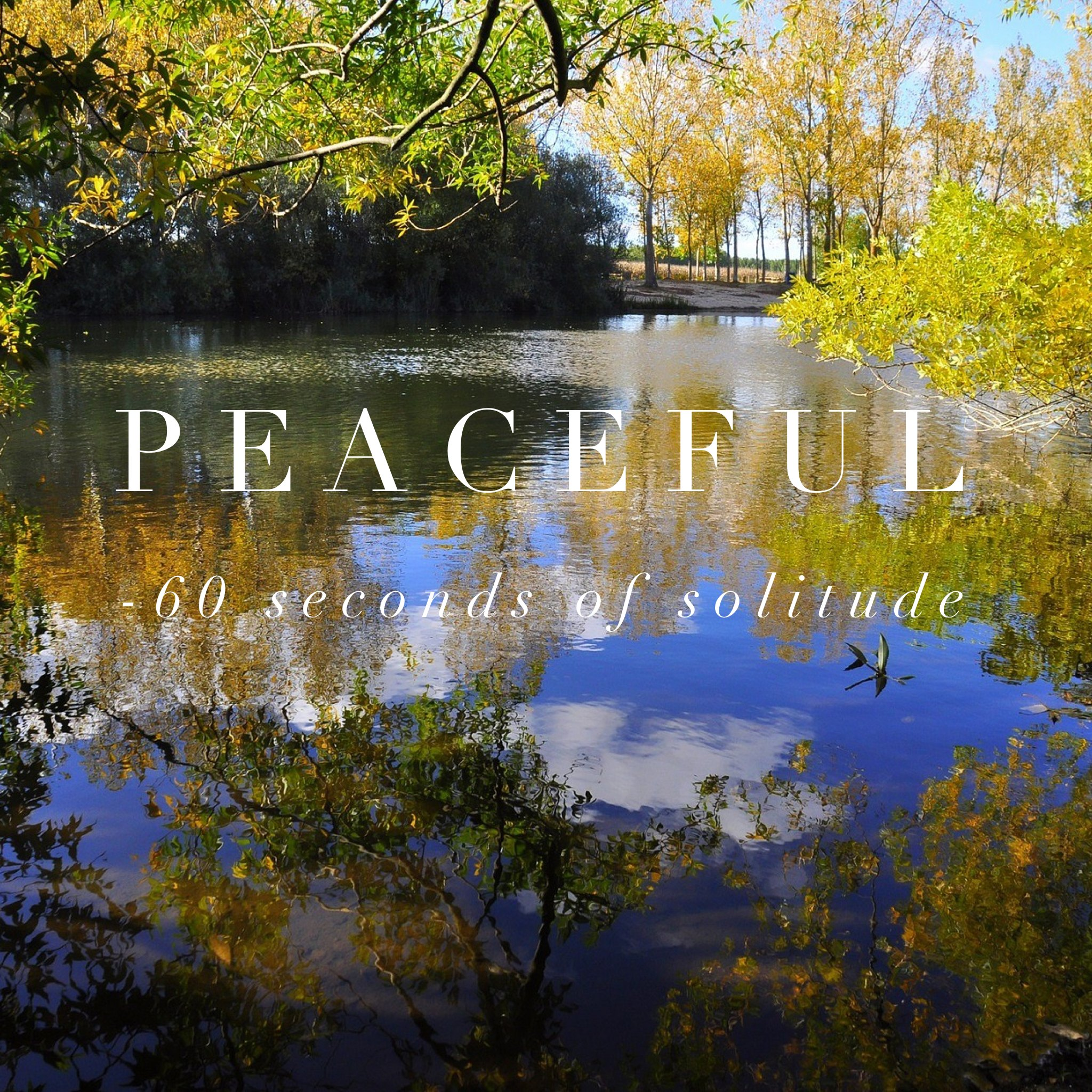 Images Of Peaceful - impremedia.net