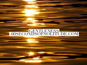 Meditation and Journaling gentleness 60 Seconds of Solitude