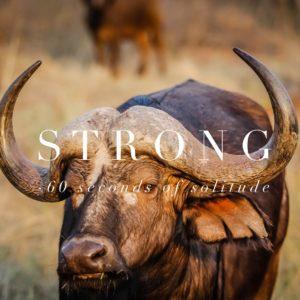 Strong meditation