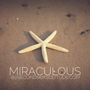 MIRACULOUS MEDITATION