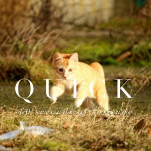 quick meditation