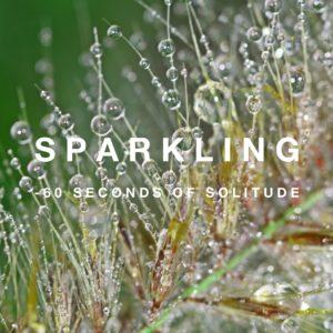sparkling meditation