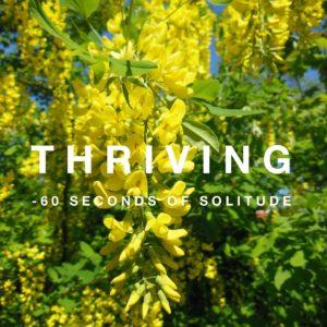 thriving meditation