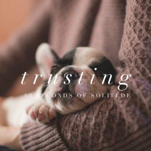 trusting meditation