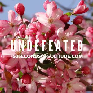 UNDEFEATED MEDITATION