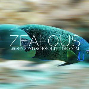 ZEALOUS MEDITATION